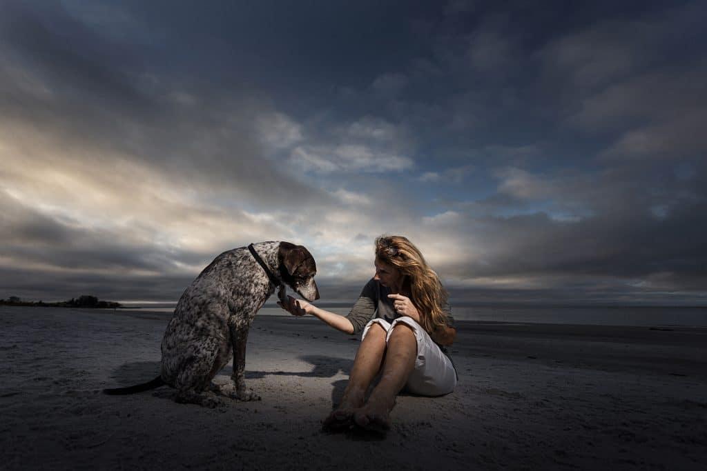 perro en la playa con su dueña - curso fotografía